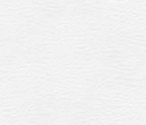 lederpatroon wit klein