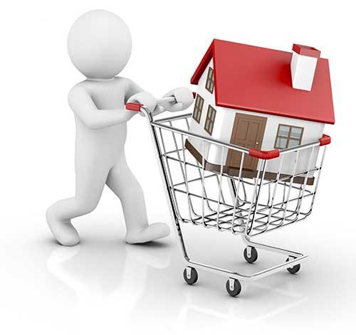 winkelwagen met huis